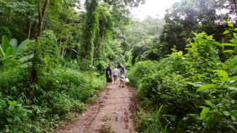 The Hike Through The Jungle To The Waterfall
