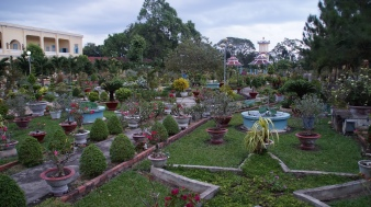 Gardens at the Cao Dai Temple