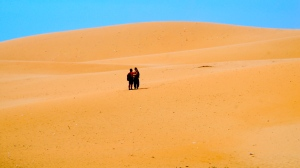 Sand Dunes Outside Mui Ne